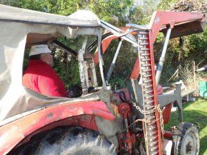 1. April 2017 Reinigungsaktion des Dorfweihers in Dietersdorf (TK) - Traktor im Einsatz