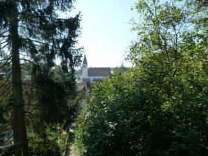 September 2016 – ein Spaziergang durch Dietersdorf. Georgskirche durch Bäume