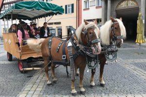 02.09.2017 - Das Fest der Stadtteile zum Jubiläumsjahr der Stadt Schwabach - 900 Jahre. Kutsche