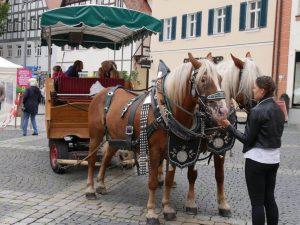 02.09.2017 Fest der Stadtteile (RPS) - Kutschfahrten Heid