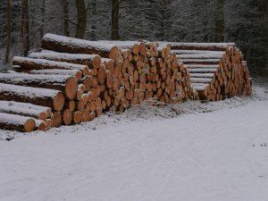 18.02.2018 Winter Impressionen Dietersdorf (RPS) - Holz-Wirtschaft
