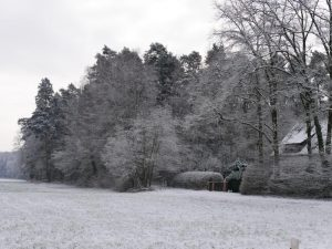 18.02.2018 Winter Impressionen Dietersdorf (RPS) - Heroldsberg
