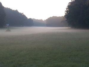 Dietersdorf im Nebel (RPS)