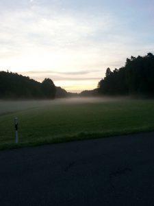 Nebel im Zwieseltal (RPS)