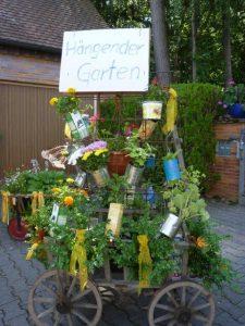 2014 - Kärwa Dietersdorf (RPS) -Festumzug - Hängender Garten