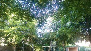 27.07.2018 - Spielplatz Dietersdorf (RPS) - geschützt von Bäumen