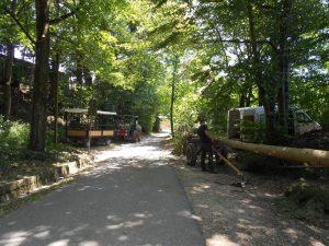 06.07.2019 - Kärwa Dietersdorf (Jochen Steffan) - Baum holen